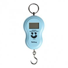 RuiChy Digital Hanging Weighing Scales for Fishing Luggage